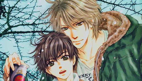 Super Lovers anime