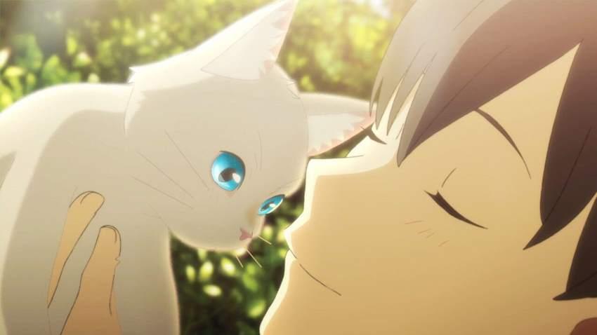 A Whisker Away anime